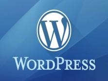 WordPress商业多站点配置教程