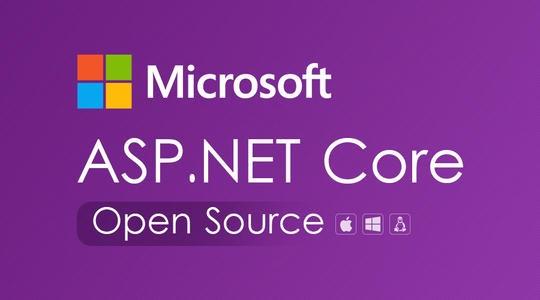 .net coreWeb项目实战