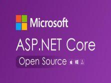 .net coreWeb項目實戰