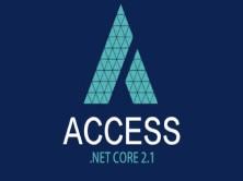 .Net CORE权限设计实战