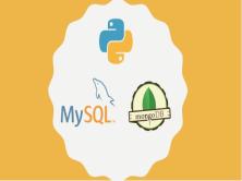 Python操作主流数据库MySQL/MongoDB