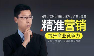 精准市场营销策略与商业模式解析