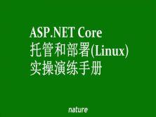 ASP.NET Core宿主和部署Linux实操演练手册