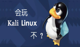 Kali与编程:Kali Linux渗透测试从基础学习到实战操作教程