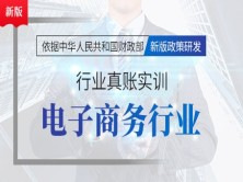 7天学习电子商务行业实操账务