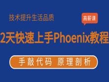 徐培成2天快速上手Phoenix视频教程