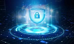 公安天网、视频专网、平安城市、雪亮工程-视频安全综合解决方案