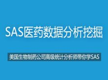 SAS数据分析:从入门到企业实战