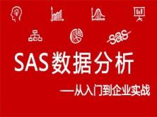 SAS数据分析:从基础到企业实战