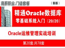Oracle運維實戰與日常維護管理入門(15個Oracle運維管理生產案例)