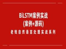 老钱《自然语言处理》实战训练营-BiLSTM项目实践(附源码)