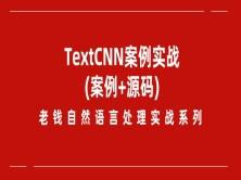 老钱《自然语言处理》实战训练营-TextCNN项目实践(附源码)