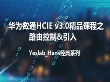 Yeslab_Hans华为数通HCIA/HCIP/HCIE经典系列IE10 路由控制&引入