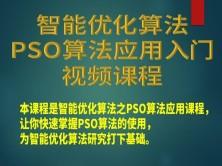 智能优化算法之粒子群(PSO)算法应用入门视频课程