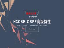 H3CSE-OSPF