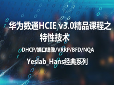 Yeslab_Hans华为数通HCIA/HCIP/HCIE经典系列之HCIP03 特性技术