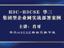 H3C-H3CSE 华三 集团型企业网实战部署案例[肖哥视频]