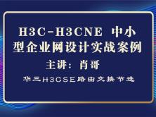 H3C-H3CNE 中小型企业网设计实战案例[肖哥视频]