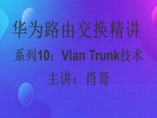 华为HCIP路由交换精讲系列10:VLAN Trunk技术[肖哥]视频课程