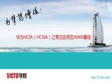 华为HCIA(HCNA)之常见应用及WAN基础