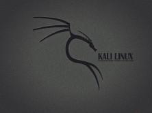 Kali Linux渗透测试环境搭建与基础掌握技巧