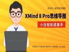 和东东老师一起学系列—XMind 8 Pro思维导图就该这样学(小白轻松成高手)
