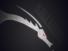 Kali Linux渗透测试工具使用教程