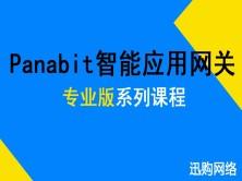Panabit智能应用网关专业版--网桥接入组网