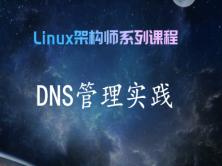 DNS快速入门实践