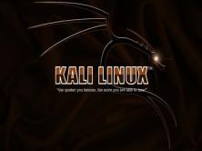 Kali Linux渗透测试与网络攻防及白帽子黑客编程全程课