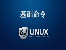 Linux基础命令操作