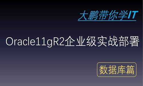 Oracle11gR2企业级实战部署
