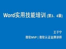 Word系列第3、4章:高效文档处理(长文档、多文件)(买前务必看下面的课程简介!)