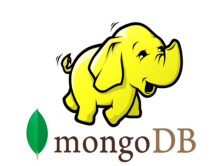 MongoDB 初级教程