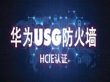 【钟海林】华为HCIE-security-USG防火墙视频课程