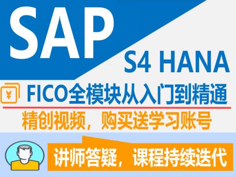 SAP S4 HANA  FICO 财务&成本模从入门到精通