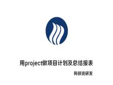 用project做项目计划及总结报表