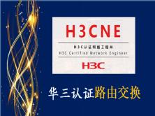 H3C NE ��涓�缃�缁�宸ョ�甯�瑙�棰���绋�