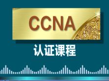 CCNA瑙�棰���绋�2018褰���