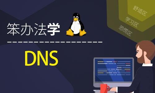 笨办法学Linux DNS (原理、实践、记录与排错)-视频课程