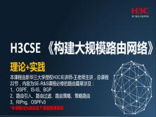 H3CSE-大规模路由技术篇
