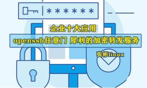 [张彬linux]企业十大应用-openssh任意门 犀利的加密转发服务
