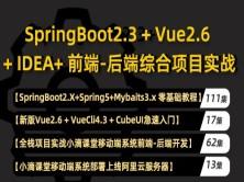 20年新版springboot 2.3视频教程mybatis/vue/cubeui项目实战课程