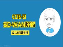 CCIE-EI(SD-WAN视频)