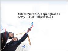 物联网之java实现(springboot + netty + 心跳,附完整源码)