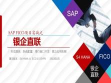 SAP FICO 项目实战之 银企直联