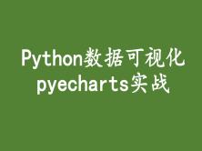 Python数据可视化  pyecharts实战