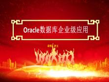 Oracle数据库企业级应用