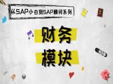 SAP FI模块总分类账(含有学习资料可下载)