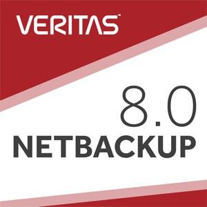 企业实战:Veritas NBU 8.0备份与还原